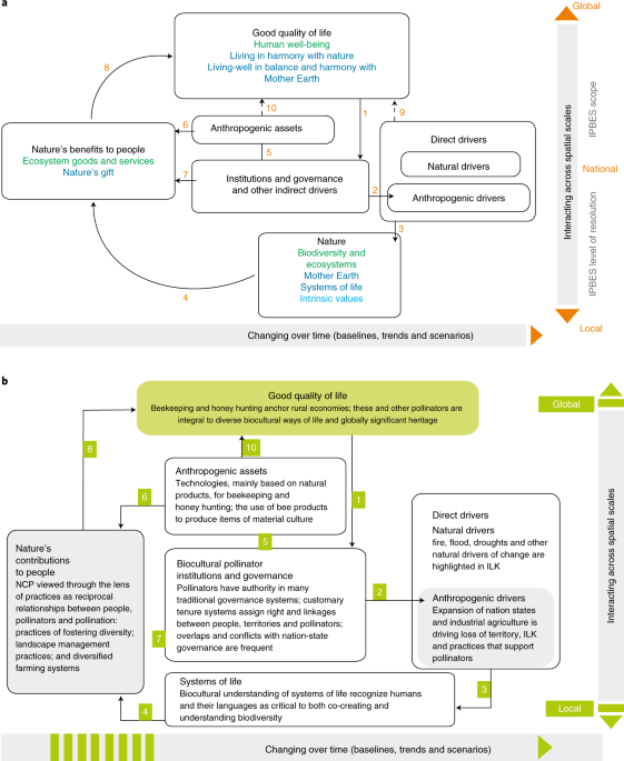 Biocultural approaches to pollinator conservation