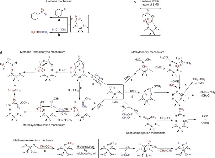 Recent Trends And Fundamental Insights In The Methanol To