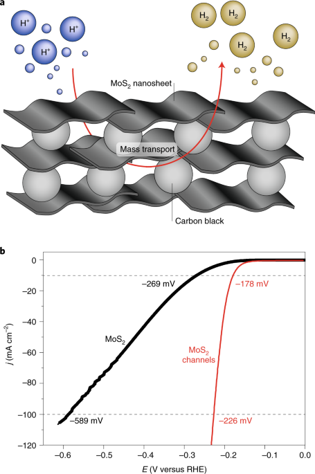 Characteristics and performance of two-dimensional materials for