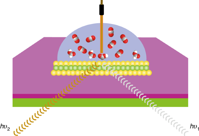 Understanding heterogeneous electrocatalytic carbon dioxide