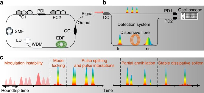 Real-time observation of dissipative soliton formation in