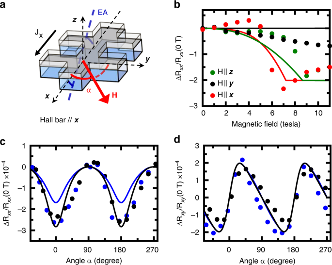 Anisotropies and magnetic phase transitions in insulating antiferromagnets determined by a Spin-Hall magnetoresistance probe
