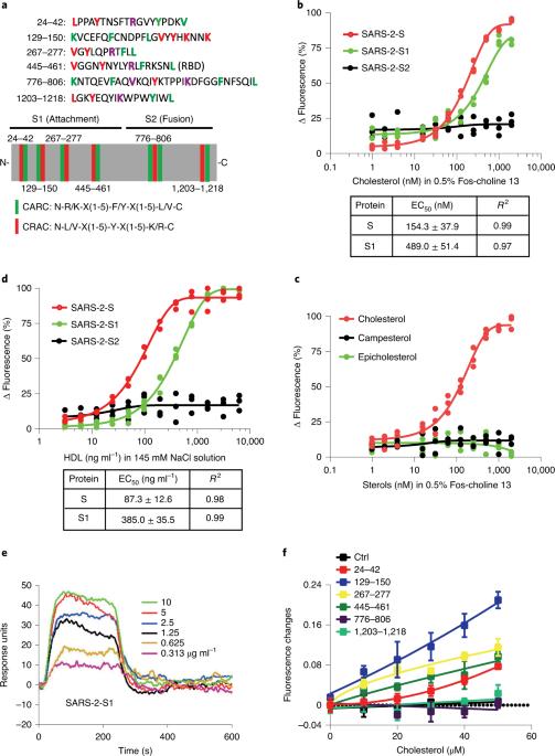 HDL-scavenger Receptor B Type 1 Facilitates SARS-CoV-2 Entry | Nature  Metabolism