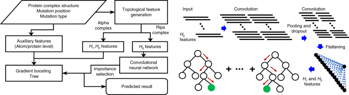 A topology-based network tree for the prediction of protein–protein binding affinity changes following mutation