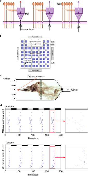 Rapid online learning and robust recall in a neuromorphic olfactory circuit