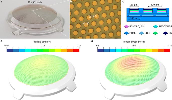 polyretina protesi visiva elettrodi retina Diego Ghezzi epfl