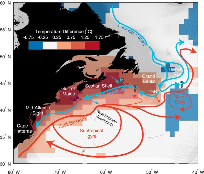 Changes in the Gulf Stream preceded rapid warming of the Northwest Atlantic Shelf