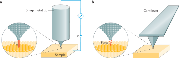 Scanning probe microscopy | Nature Reviews Methods Primers
