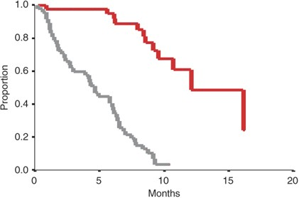 Gemcitabine Oxaliplatin Combination For Ovarian Cancer Resistant To Taxane Platinum Treatment A Phase Ii Study From The Gineco Group British Journal Of Cancer