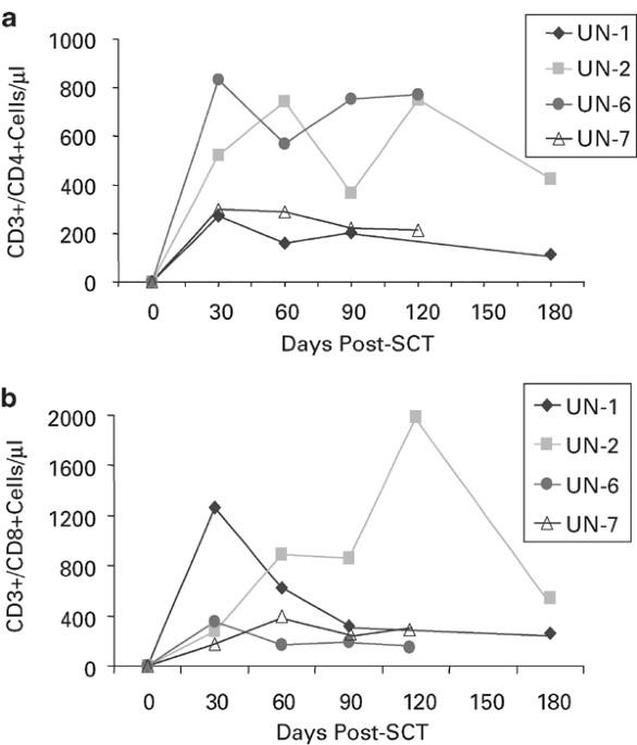 Molecular Remission Of Cml After Autotransplantation