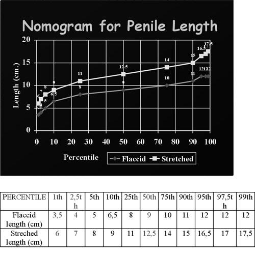 norma w cm dla penisa