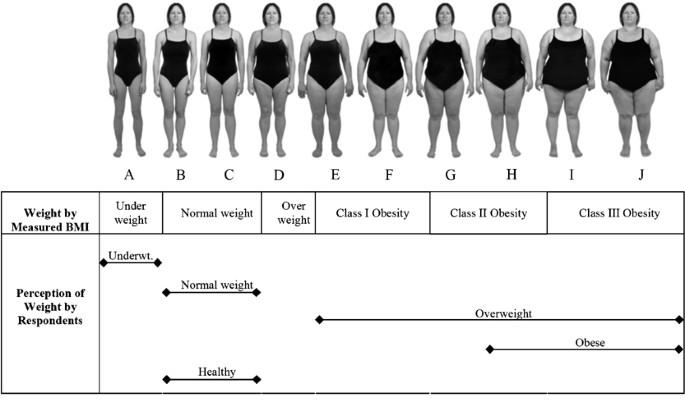 Female bmi 22 BMI Calculator
