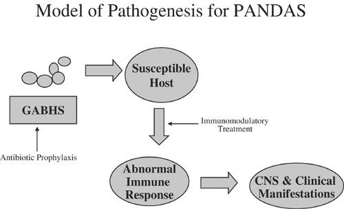 PANDAS pathophysiology ile ilgili görsel sonucu
