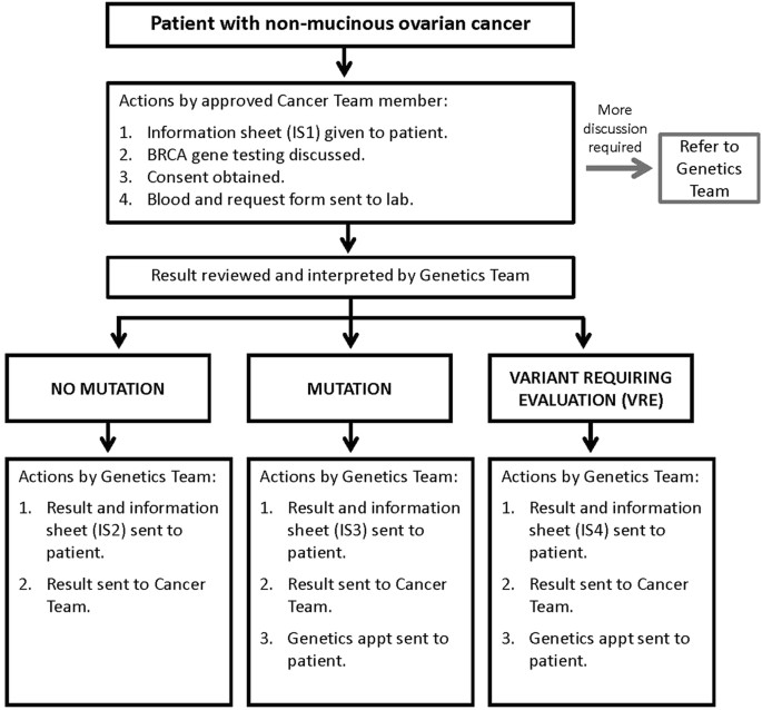 Implementing Rapid Robust Cost Effective Patient Centred Routine Genetic Testing In Ovarian Cancer Patients Scientific Reports