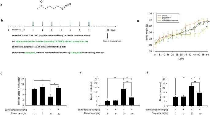 Sulforaphane protects against rotenone-induced neurotoxicity