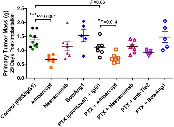 Aflibercept And Ang1 Supplementation Improve Neoadjuvant Or Adjuvant Chemotherapy In A Preclinical Model Of Resectable Breast Cancer Scientific Reports