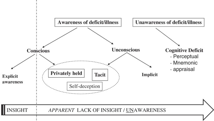Self Reflection In Illness And Health Literal And Metaphorical Humanities And Social Sciences Communications