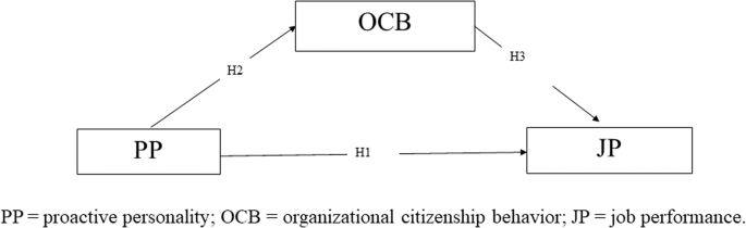 Proactive personality and job performance of athletic coaches: organizational citizenship behavior as mediator