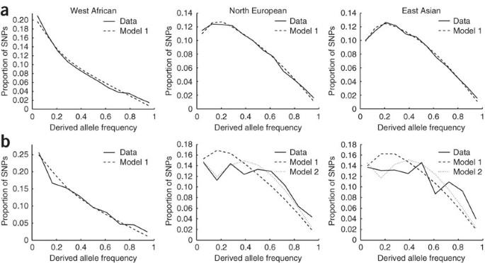 Download Diagram Of Genetic Drift Html Full Version Hd Quality Drift Html