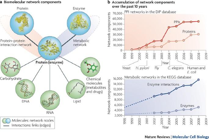 Molecular Biology And Evolution
