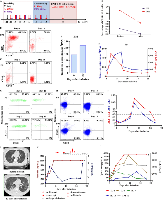 Efficiency And Side Effects Of Anti Cd38 Car T Cells In An