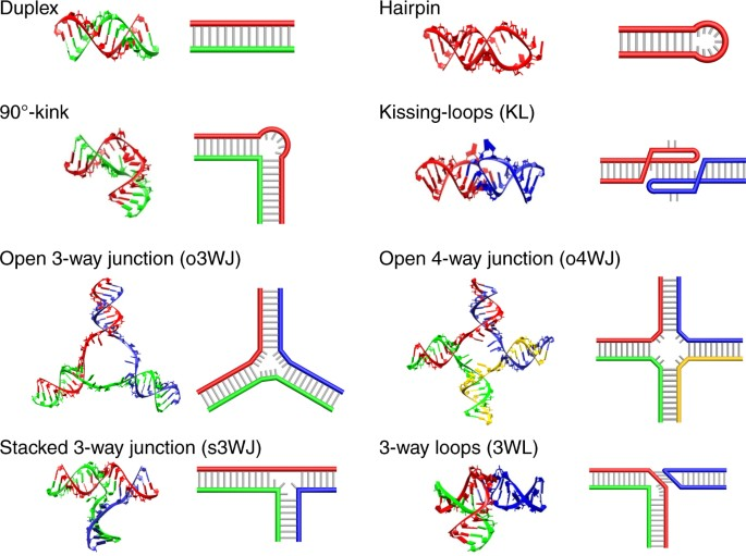 in vivo production of rna nanostructures via programmed
