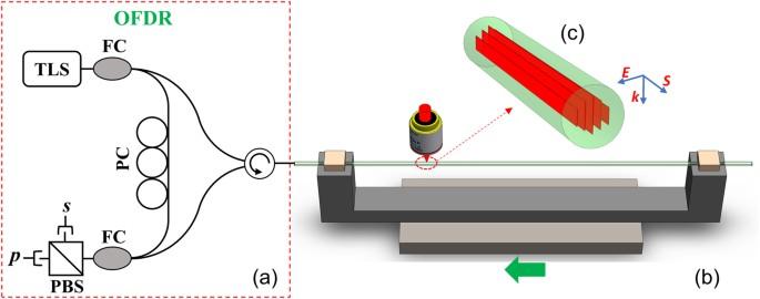 Distributed Optical Fiber Sensors With Ultrafast Laser