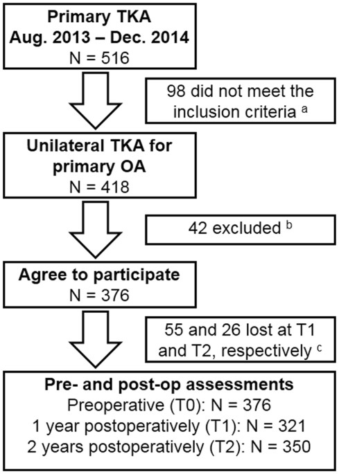 The effect of primary total knee arthroplasty on the ...