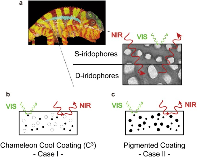 Artificial Chameleon Skin That Controls Spectral Radiation  Development Of Chameleon Cool