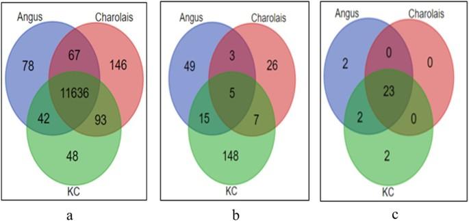 Transcriptome analyses reveal reduced hepatic lipid ...