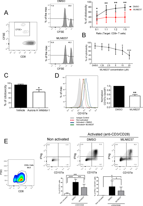 Aurora A Controls Cd8   T Cell Cytotoxic Activity And