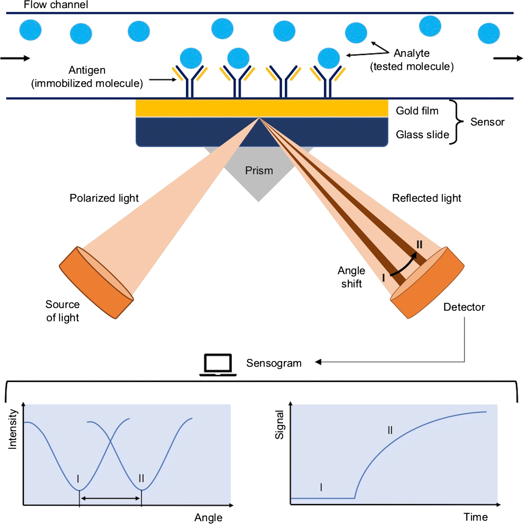 Review: immunoassays in DNA damage and instability detection