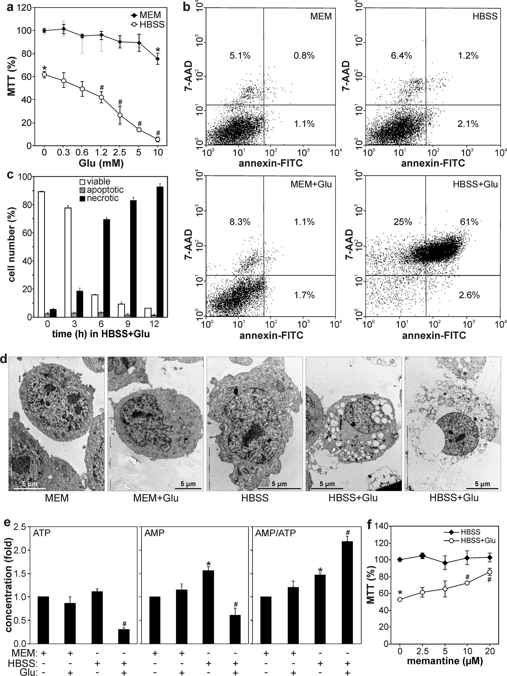 Transcriptional block of ampk induced autophagy promotes