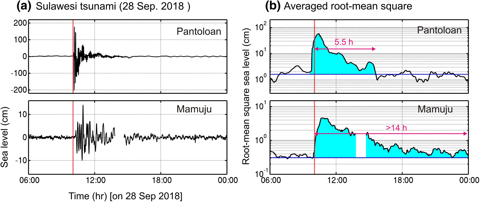 Insights on the Source of the 28 September 2018 Sulawesi