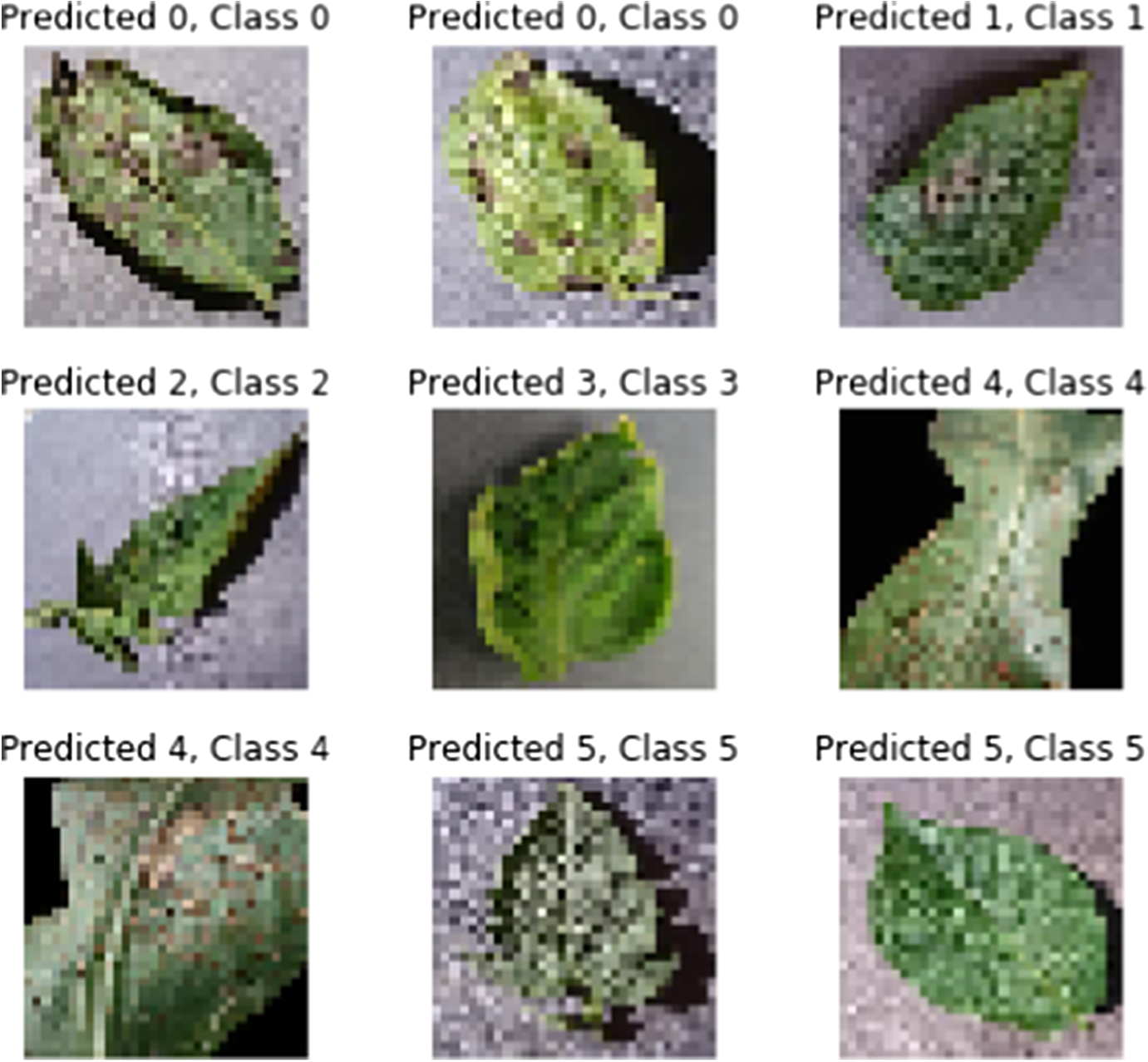 Seasonal Crops Disease Prediction and Classification Using