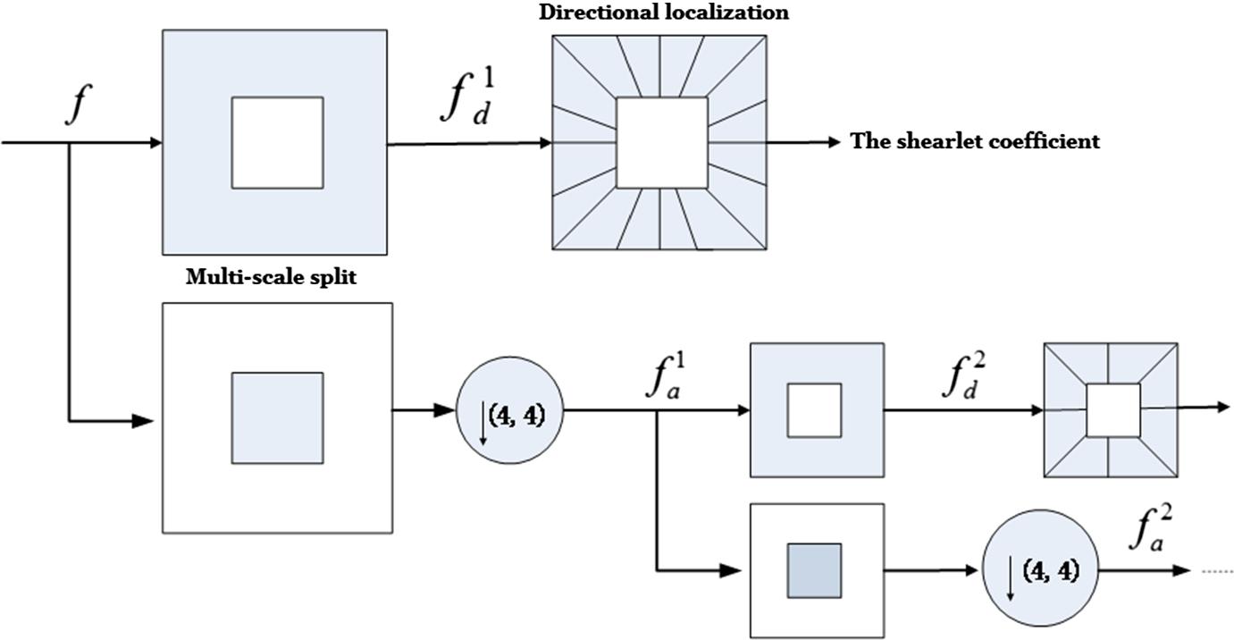 A Novel Despeckling Method for Medical Ultrasound Images