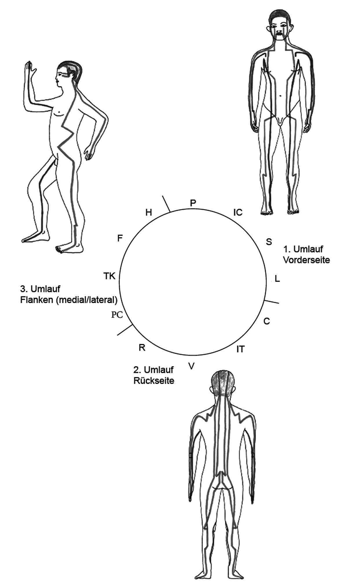 Charmant Atlas Der Menschlichen Anatomie Netter 5. Auflage Pdf ...
