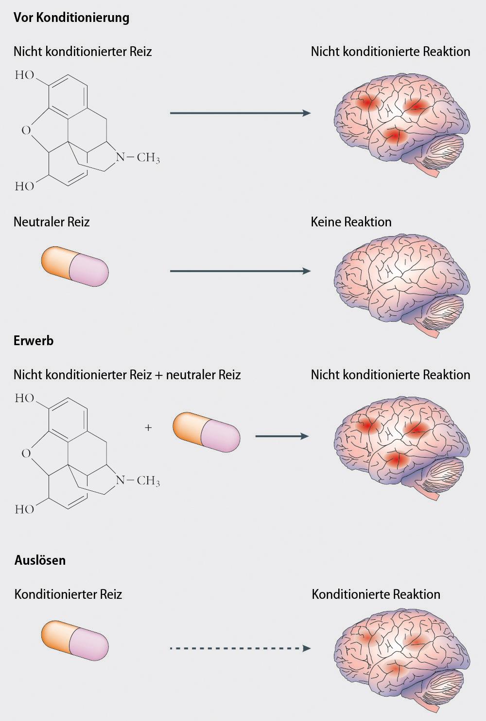 Placeboeffekte und ihre Implikationen in der Medizin | SpringerLink