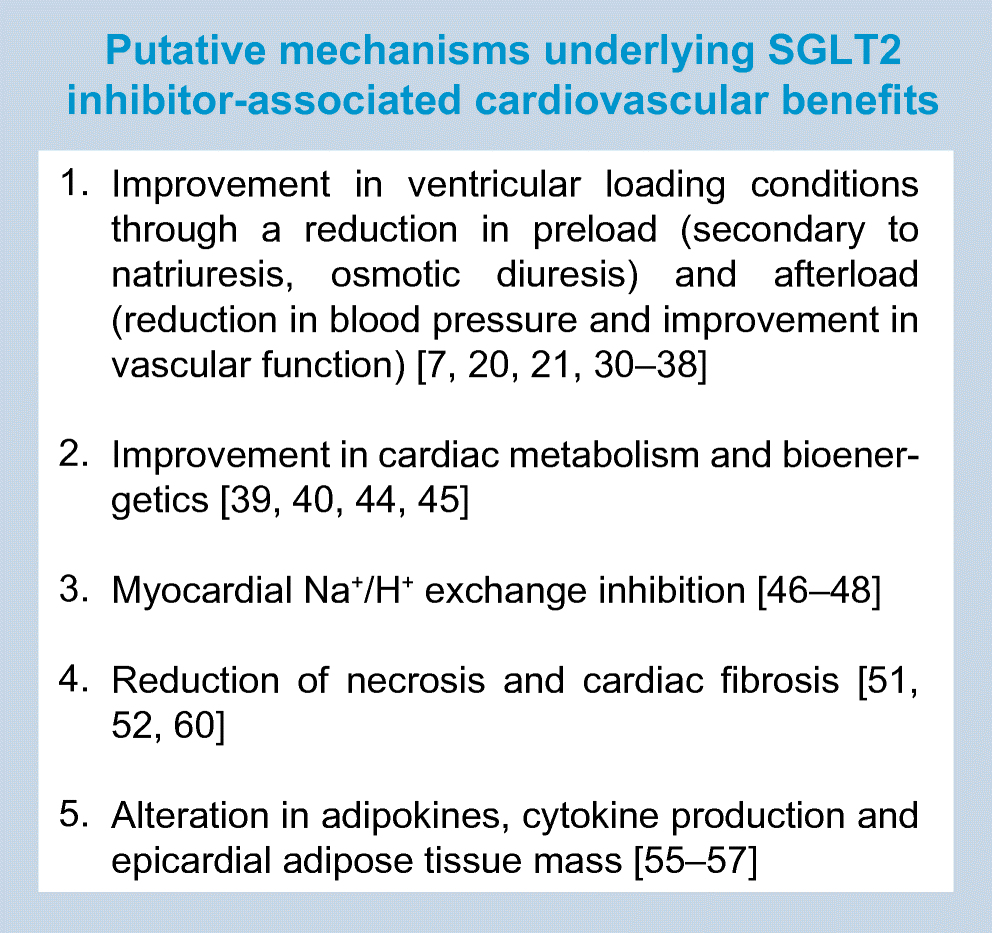 SGLT2 inhibitors and mechanisms of cardiovascular benefit: a state