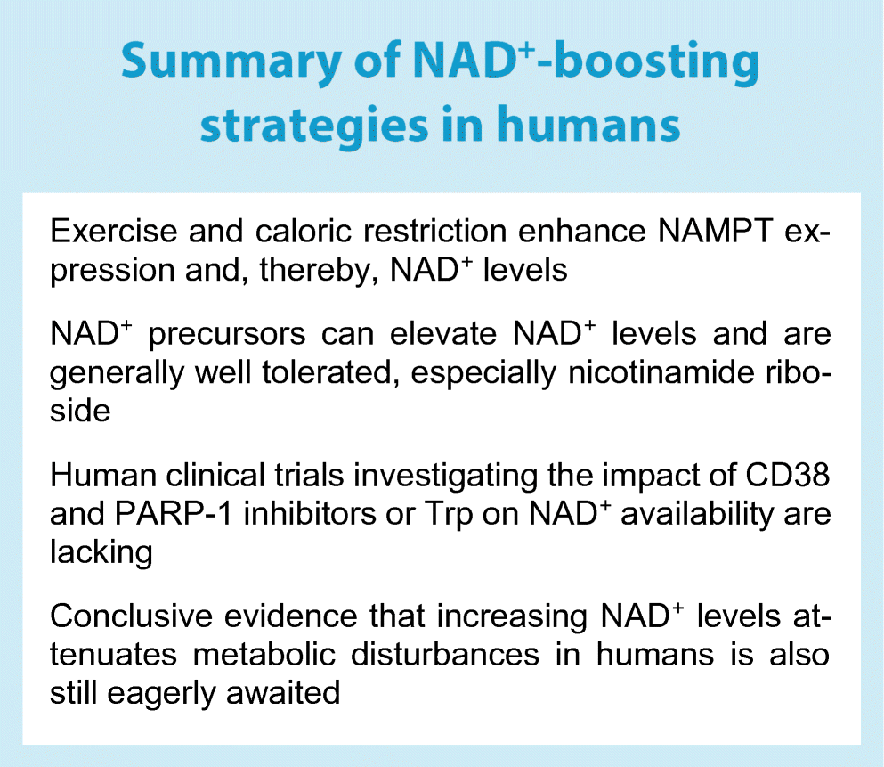 NAD+ metabolism as a target for metabolic health: have we