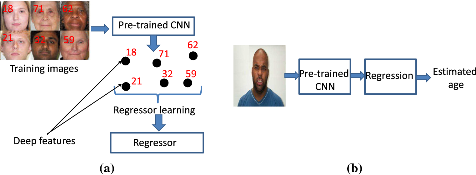 Age estimation in facial images through transfer learning | SpringerLink