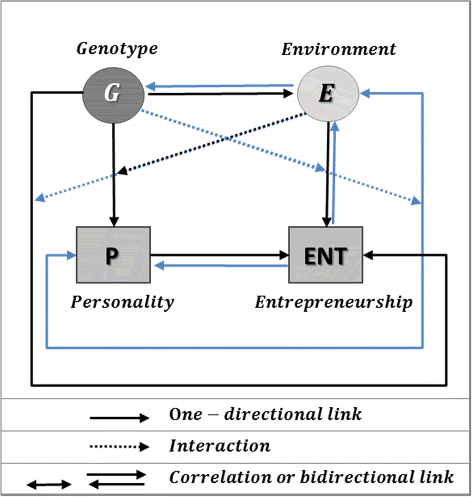The contribution of behavior genetics to entrepreneurship