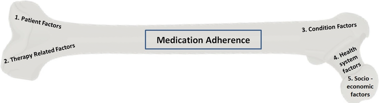 A systematic review of factors affecting medication