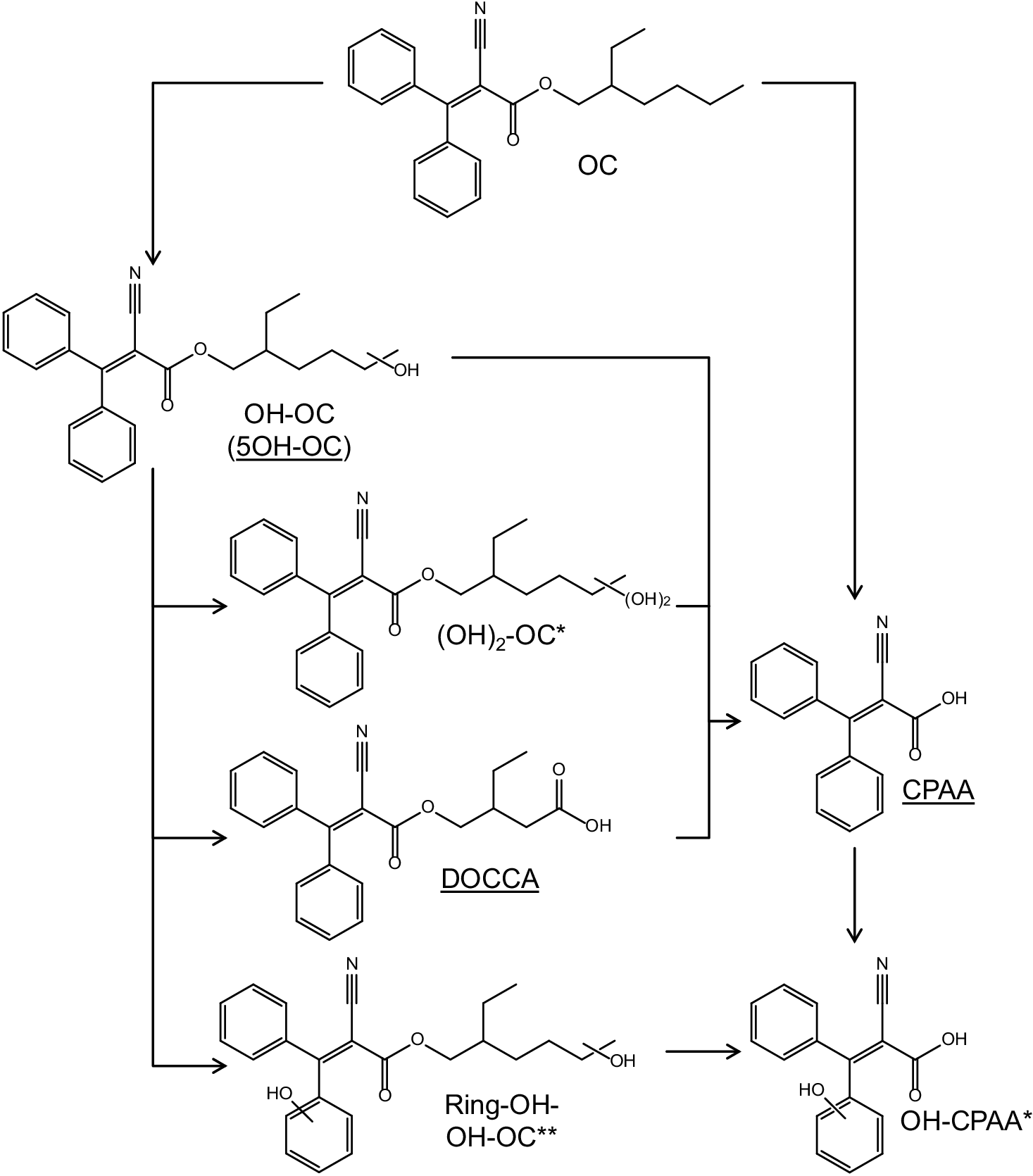Urinary metabolites of the UV filter octocrylene in humans