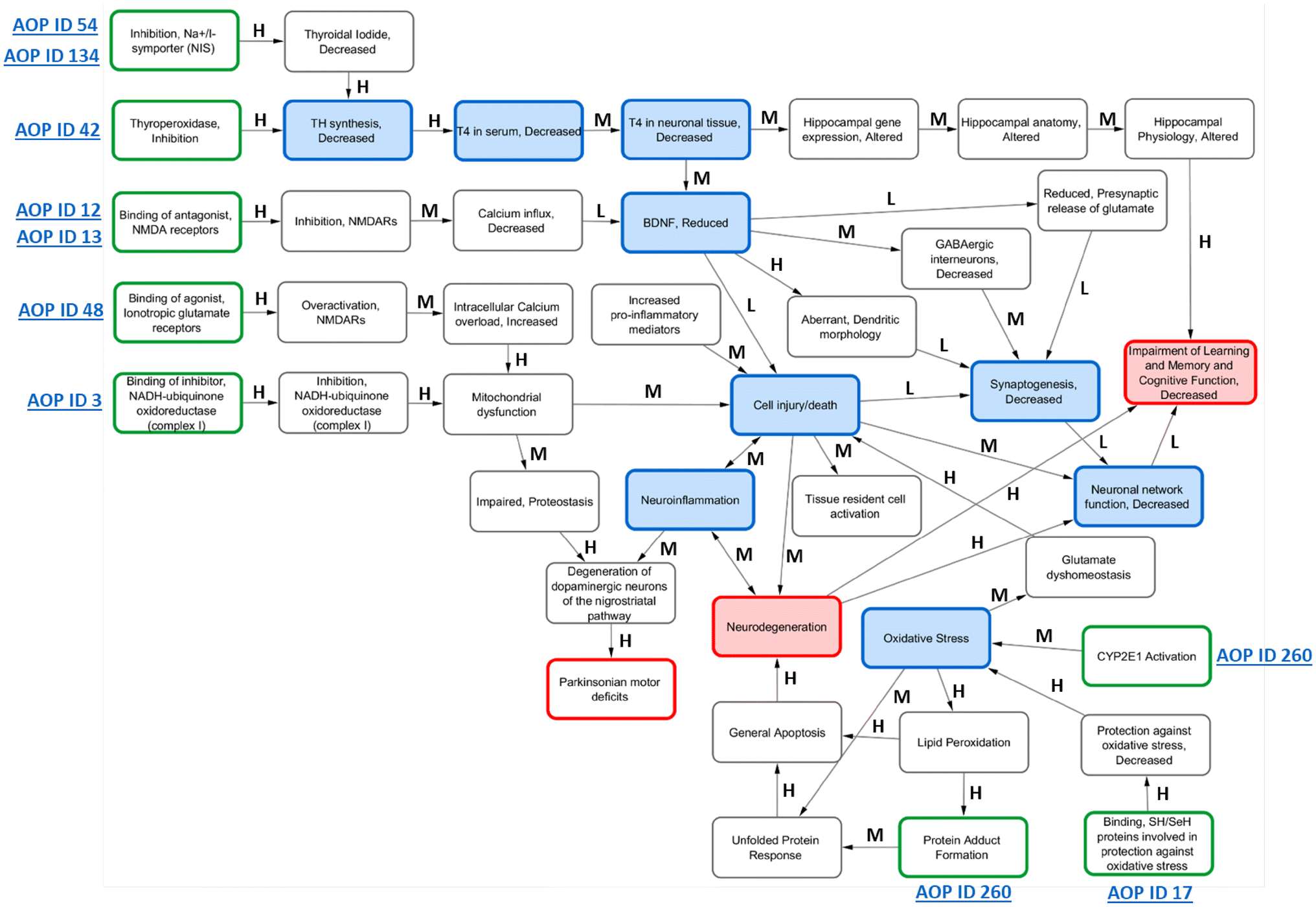 Development and analysis of an adverse outcome pathway