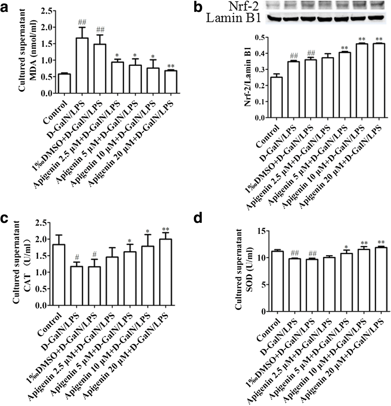 Protective Effect Of Apigenin On D Galactosamine Lps Induced Hepatocellular Injury By Increment Of Nrf 2 Nucleus Translocation Springerlink