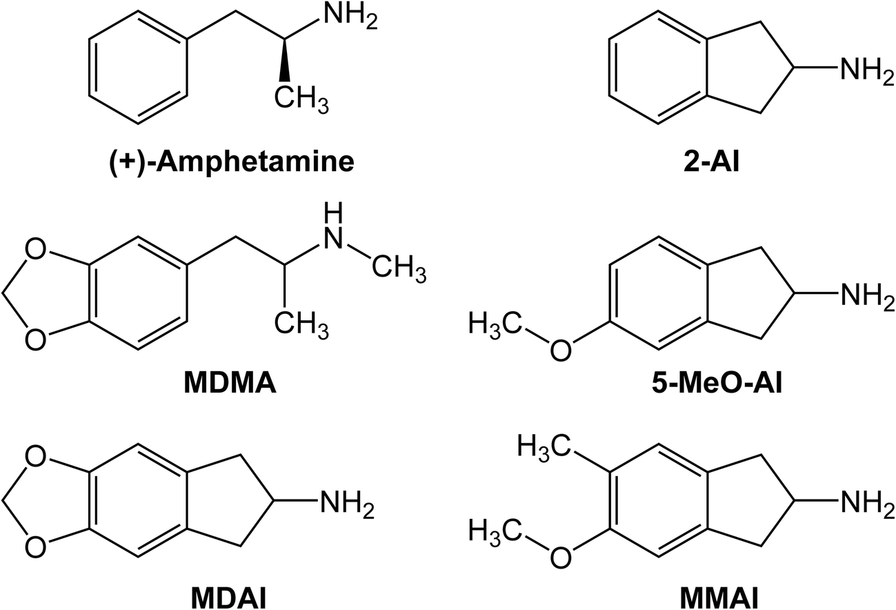 2-Aminoindan and its ring-substituted derivatives interact