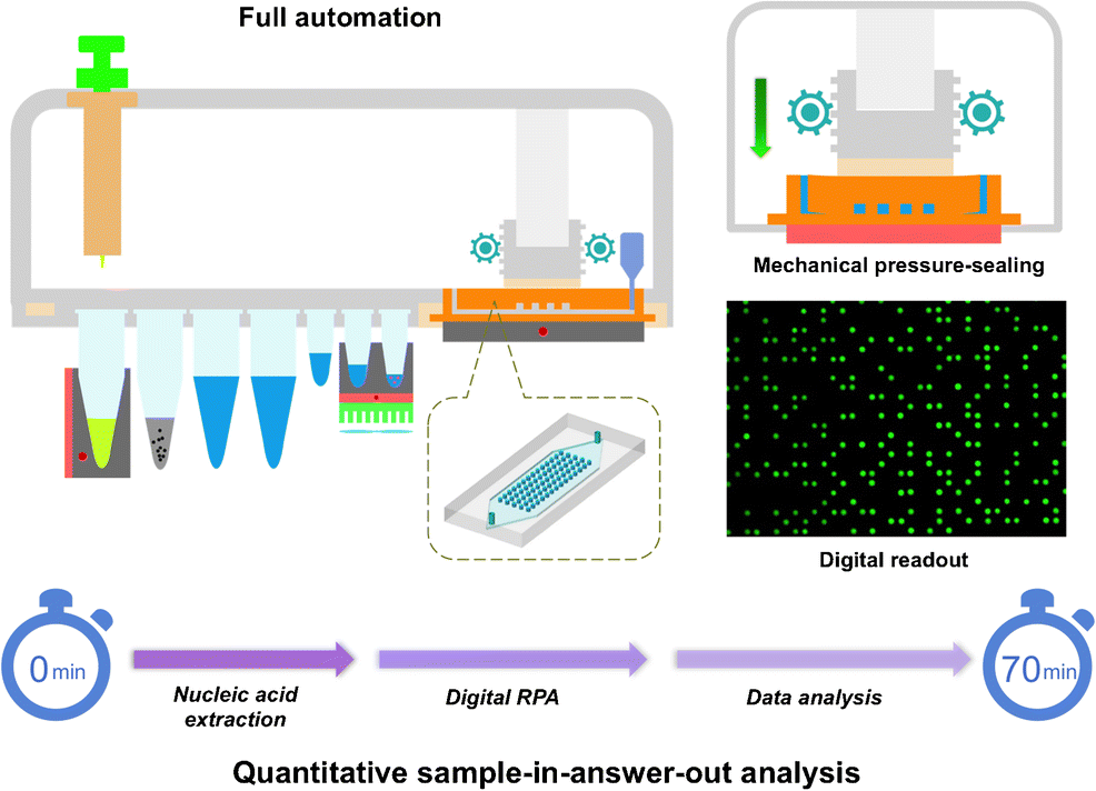 A sample-in-digital-answer-out system for rapid detection