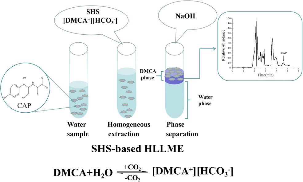 Solid Phase Extraction Coupled With Switchable Hydrophilicity