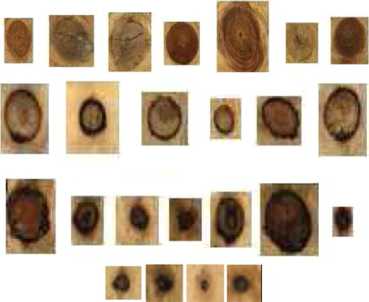 wood defect classification based on image analysis and support